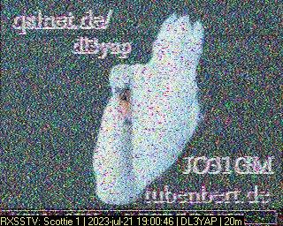 History #2 de NL13974
